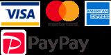 visa,MasterCard,amex,paypay